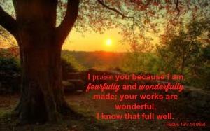 Psalm 139.14