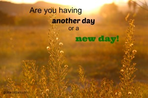 Are you having another day or a new day