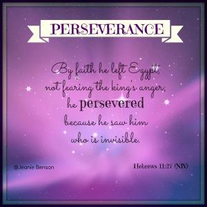 Hebrews 11.27 niv PERSEVERANCE 2016