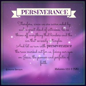HEbrews 12.1 2 niv PERSEVERANCE 2016