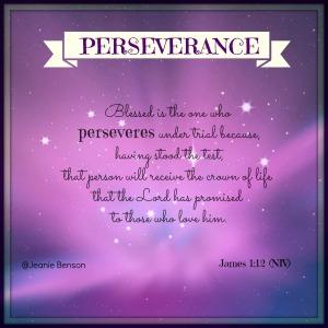 James 1.12 niv PERSEVERANCE 2016
