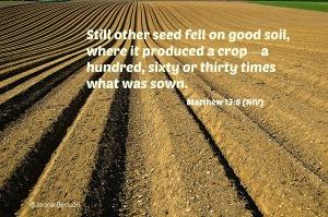Matthew 13.8 niv