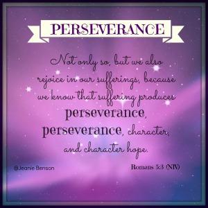 Romans 5.3 niv PERSEVERANCE 2016