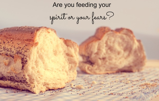 feed your spirit not your fears