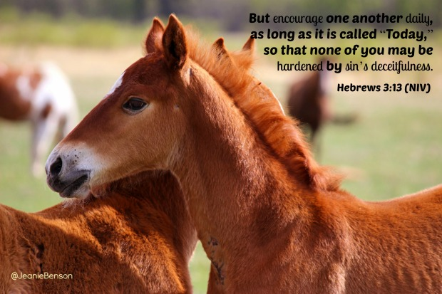 Hebrews 3.13 niv