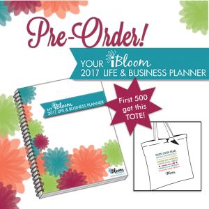 FB-Affiliate-2017-planner